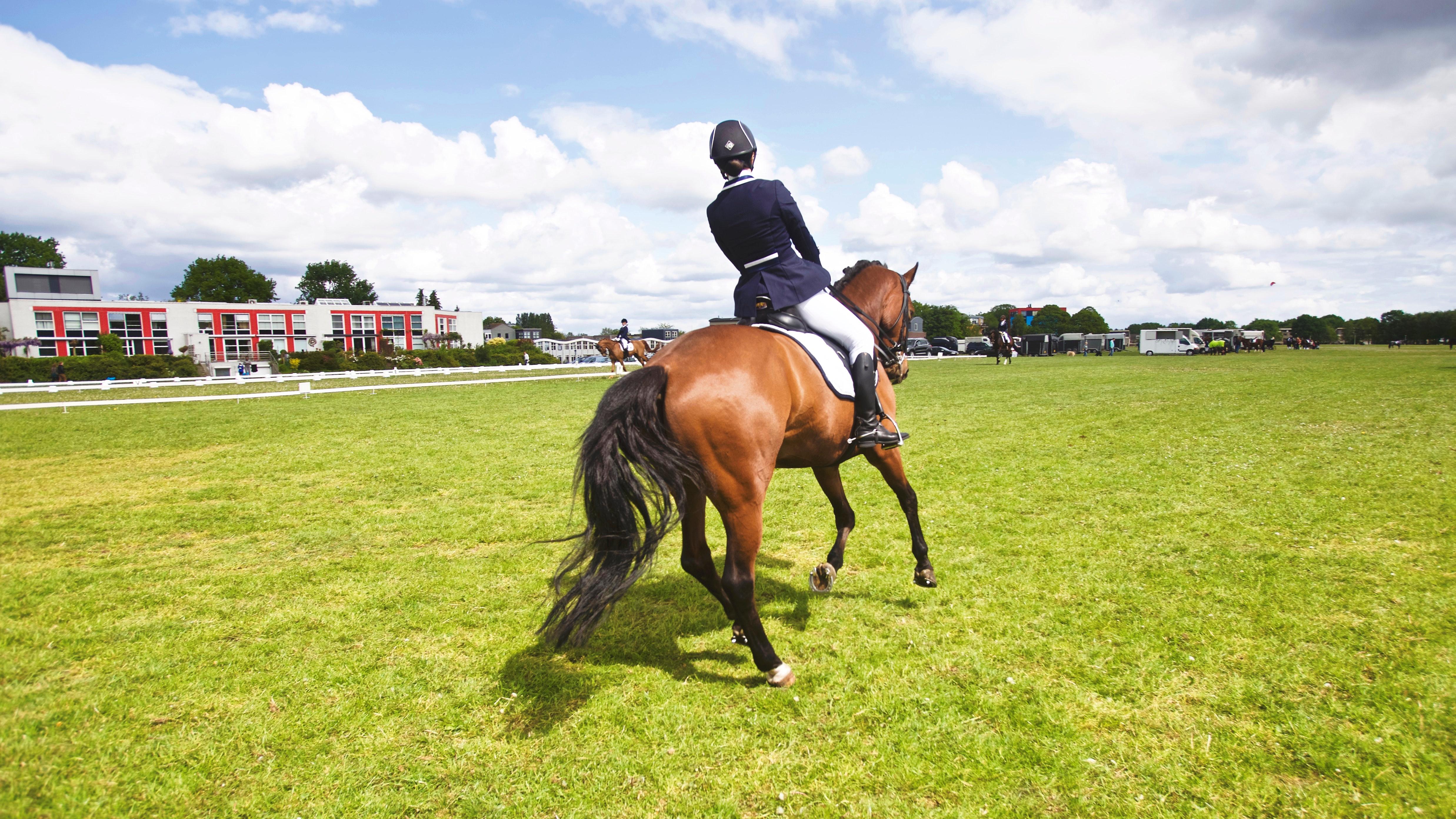 Jak zacząć przygodę z jeździectwem konnym w siedmiu krokach?